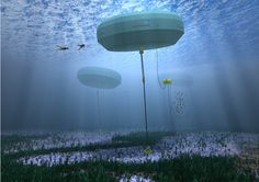 Perth's Carnegie Wave Energy project produces clean power and potable water from the motion of the ocean | Inhabitat - Sustainable Design Innovation, Eco Architecture, Green Building