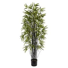 Nearly Natural Black Bamboo Silk Tree -- To view further for this item, visit the image link.