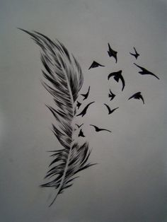 Feather And Bird Tattoo Meaning Tattoo Center Bird Crow Feather Tattoo  Designs | Photo Gallery -