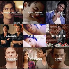 My favourite vampire (in TVD) Vampire Diaries Memes, Vampire Diaries Damon, Vampire Diaries The Originals, Vampire Diaries Poster, Ian Somerhalder Vampire Diaries, Vampire Daries, Vampire Diaries Wallpaper, Delena, The Cw