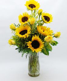 An all around design of Six fresh Sunflowers and Six vibrant Yellow Roses arranged in a clear vase.