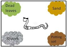 """Earthworms make nutrients for other plants by eating dead plants. In the """"Squirmy Wormy: Which Soil Type Do Earthworms Like Best?"""" #science project, students explore what kind of soil helps earthworms do their work. [Source: Science Buddies, http://www.sciencebuddies.org/science-fair-projects/project_ideas/Zoo_p061.shtml?from=Pinterest] #STEM #scienceproject"""