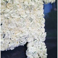 Our Flower wall is collapsible so is easily transported but more importantly can fit into rooms that don't have large doorways. Sarah.jane.events@outlook.com