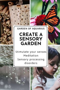 A sensory garden for children and adults with special needs provides a relaxing area to stimulate all five senses. A safe haven to touch, smell, taste, see and hear the wonders of nature. Benefits Of Gardening, Organic Gardening, Gardening Tips, Gardening With Kids, Allotment Gardening, Indoor Gardening, Bonsai, Natural Playground, Playground Ideas