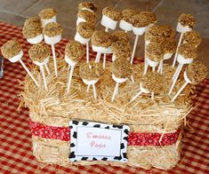 Bale of hay as cakepop holder for a cowboy party Rodeo Party, Cowboy Theme Party, Cowboy Birthday Party, 2nd Birthday Parties, 23 Birthday, Birthday Ideas, Pirate Party, Woody Birthday, Horse Birthday