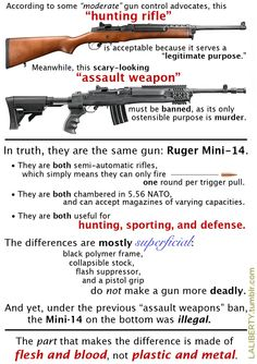 """Assault Weapon"" = Meaningless."