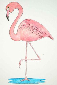 Flamingo-patterns