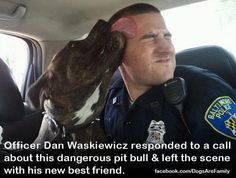 Officer Dan responded to a call about a vicious pit bull...and left the scene with his new best friend. ♥