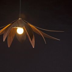 Flux Pendant Light  MacMaster Design  Available in Oak, Walnut, Maple, and Cherry,