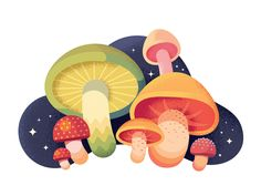 This is a selection of Dribbble shots posted through summer Illustrations reflect process of exploring textures and colors, using larger shapes to make a dynamic compositions, perfecting water drawing skills.This summer wouldn't be so productive w… Flat Design Illustration, Plant Illustration, Cute Illustration, Posca Art, Mushroom Art, Affinity Designer, Ipad Art, Elements Of Art, Food Illustrations