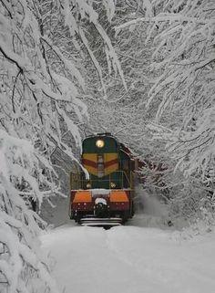 冬天的记忆
