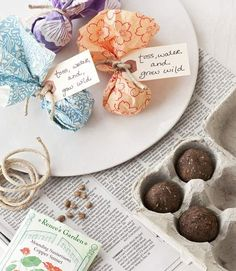 Seed Bombs!! Eco friendly favor. Encourage the guests to keep planting and help the environment by giving them seeds.