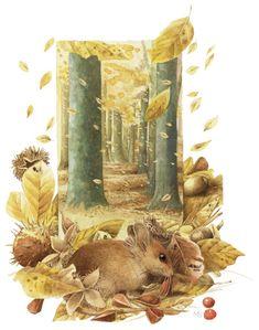 Marjolein Bastin - Herfst op de Veluwe