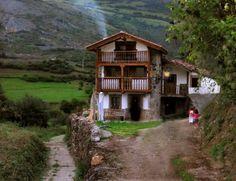 Tudanca. Cantabria. Spain.foto: javier.
