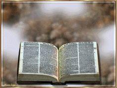 biblia sagrada-jesus