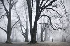 "Photographer Kilian Schönberger created Brothers Grimm Homeland German photographer Kilian Schönberger recently has presented his new project called ""Brothers Grimm's Homeland"", where author mixed photography with illustration."