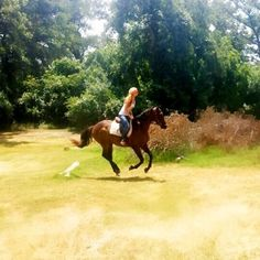 Lategram from our girl's riding trip this weekend!! This is moi atop my best friendie's rescued off the track thoroughbred Grand. We had so much fun riding and jumping and giggling in the face melting Texas sun and I will forever treasure this day and all others. Xoxos and hope everyone is having an amazing day!!  #girls #love #horses #texas #thoroughbred #gorgeous #happy #healthy #jumpy #rescue #all #animals #xoxos #reinventyourselfwithlizzy