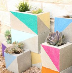 If you keep up this blog, then you may have seen my colorblocked cinder block succulent garden before. After posting a photo of it several ...