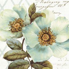 White Floral Bliss I Fine-Art Print by Lisa Audit at UrbanLoftArt.com