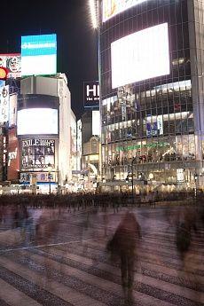 Shibuya 1 #tokyo #city #streets #tapeterie #night #tapeten #tapete #walldesign #wall #draw #art #kunst #gestaltung #architektur #architekture #inneneinrichtung