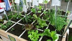 Puyallup Home, Remodeling and Gardening Show Puyallup, WA #Kids #Events