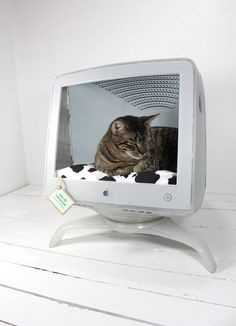 Upcycled Apple Monitor Cat Bed