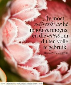 Jy moet selfvertroue hê in jou vermoëns, en die moed om dit ten volle te gebruik. Good Morning Inspirational Quotes, Inspiring Quotes About Life, Motivational Quotes, Woman Quotes, Life Quotes, Afrikaans Quotes, Favorite Bible Verses, Emotional Healing, Happy Relationships