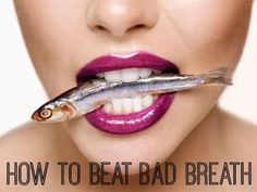 If your breath smells like you've been chomping on sardines all day, listen up! According to the Academy of General Dentistry (AGD), over 90 percent of bad breath originates in the mouth, throat, and tonsils. The main reason bad breath kicks in is thanks to bacteria in your mouth that feeds off of the particles of food that are stuck between your teeth and have been sitting there for hours. Now, here's how to kick bad breath to the curb... #FrandsendDental