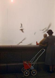 ... e si guardavano i gabbiani volare
