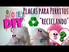 (967) DIY 3 Placas para Perros RECICLANDO, Coton de tulear I Lorentix - YouTube