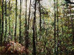 Forest scene by West Vancouver painter Gordon Smith. Abstract Landscape, Landscape Paintings, Landscapes, Romance Comics, Canadian Art, Winter Landscape, Vancouver, Watercolor Art, Pop Art