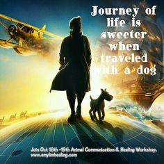 Animal Communication and Energy Healing Workshop 8th to 9th Nov. Booking @ amylimhealing.com.