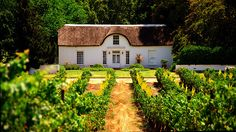 A Cape Dutch style cottage on a wine farm in Stellenbosch, South Africa South African Homes, South African Wine, Cape Dutch, Dutch House, Dutch Colonial, Colonial Architecture, Out Of Africa, Land Scape, The Good Place
