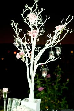 Manzanita trees, along with hanging candle holders (provided by Koyal Wholesale) are two items we love to use, which can be decorated many ways and is perfect for any occasion! Here, we (Veils and Fairytales) decorated the tree with petite blush #pink roses. Thoughts?