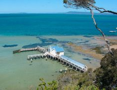 Sorrento, Painted Shells, Travel Information, Things To Do, Images, Walking, Boat, Australia, Paintings