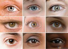 Neden Bazı İnsanların Gözleri Renkli, Bazılarının Kahverengidir? http://www.gereksizbilgi.com/neden-bazi-insanlarin-gozleri-renkli-bazilarinin-kahverengidir/