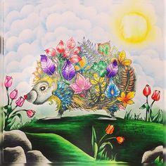 Entre cores e amores de um REINO encantado, AMO ver um ANIMAL apaixonado. Seus espinhos se tornam frágeis diante de uma flor mágica e deslumbrante . É TOP COLORIR um LIVRO onde a imaginação e o amor contagiam você de um jeitinho fascinante. #concursocriativoanimal  Livro: Floresta Encantada  #sorteio #porcoespinho #florestaencantada #livrodecolorir #johannabasford #meucolorido #antiestresse  #amopintar #sdv #20likes #follow4follow #like4like #instalike #igers #followbackteam #instadaily…