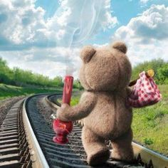 Got my weed and some clean undies,,lol Ted Bear, Coaching, Weed Humor, Puff And Pass, Smoking Weed, Adult Humor, Lady, Make Me Smile, First Love
