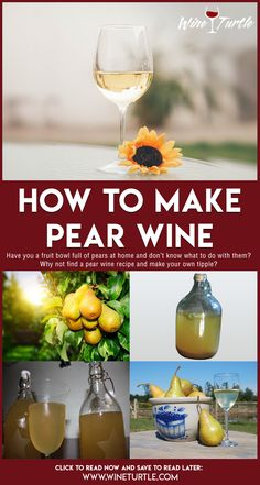 Homemade pear wine recipe Do you have a lot of pears and don't know what to do with them? Why not use them in a pear wine recipe to make a delicious tipple in your own kitchen? pear wine, types of wine, wine recipes, home made wine Wine And Liquor, Wine And Beer, Wine Drinks, Alcoholic Beverages, Homemade Wine Recipes, Homemade Alcohol, Laura Lee, Mango Wine, Mead Wine