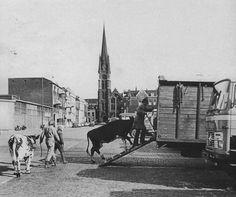 Rotterdam - Veemarkt, met inkijk van de Hugo de Grootstraat, richting Goudse Rijweg. .1973.