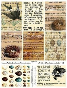 Bird And Nest Collage Sheet ATC ACEO Backgrounds DCS- 526  DigitalCollageSheets. $3.75, via Etsy.