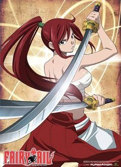 Fairy Tail Erza Wall Scroll Poster