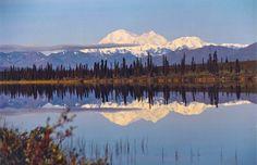 Reflection in Denali National Park, Alaska. For more, visit GreenGlobalTravel.com.