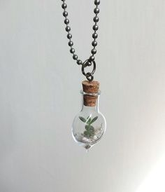 Baby Terrarium Necklace | 17 Stunning Pieces Of Jewelry Made From Living Plants