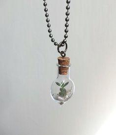 Baby Terrarium Necklace