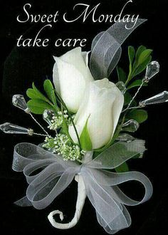 Wish you all a sweet and blessed Monday☆♡☆.