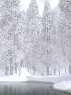 Winter and Snow Wallpaper Winter Szenen, I Love Winter, Winter Magic, Winter Time, Winter Christmas, I Love Snow, Snow And Ice, Snow Scenes, Winter Pictures