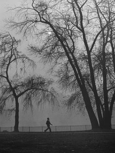 james park under a blanket of fog, london, december 1946 photo by by hans wild London Life, Old London, Cover Pics, Black And White Colour, Life Magazine, Vintage Photography, Old Pictures, London December, Black And White Photography
