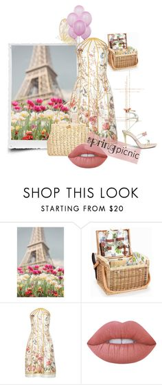 """""""Spring Picnic In Paris"""" by the-house-of-kasin ❤ liked on Polyvore featuring Picnic Time, Thakoon, Dolce&Gabbana, Lime Crime and René Caovilla"""