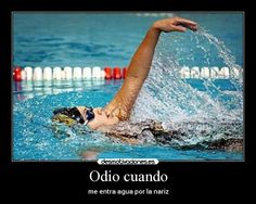 frases lindas de natacion - Google Search